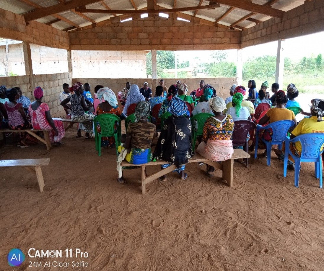Ivory Coast programme 2019 meeting farmers' wifes and women associations.jpg