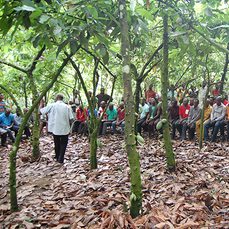 4. Training secures the future of cocoa farms